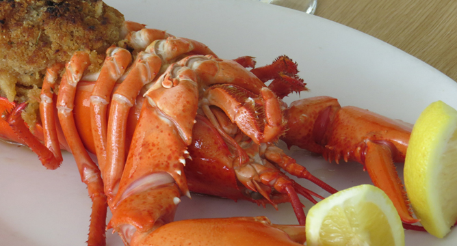 page_lobster_stuffed