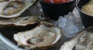 haddads oysters1