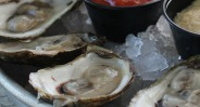 haddads oysters1